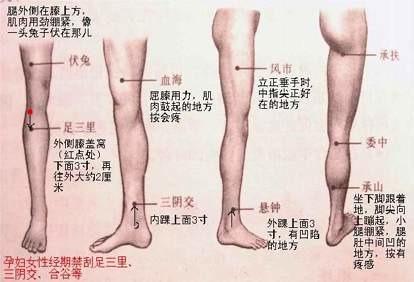 腿部减肥刮痧穴位图瘦身流行操2图片