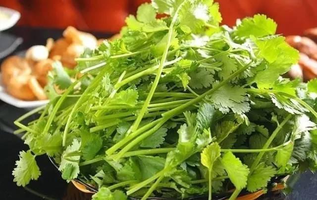 v丝瓜丝瓜:胃不舒服咋办?美味的凉拌茴香菜和茴紫菜可以和食谱一起做吗图片