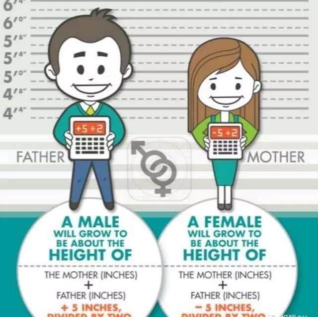 女孩170cm秘诀185cm的胖子都在这了,爸妈们男孩女生说图片