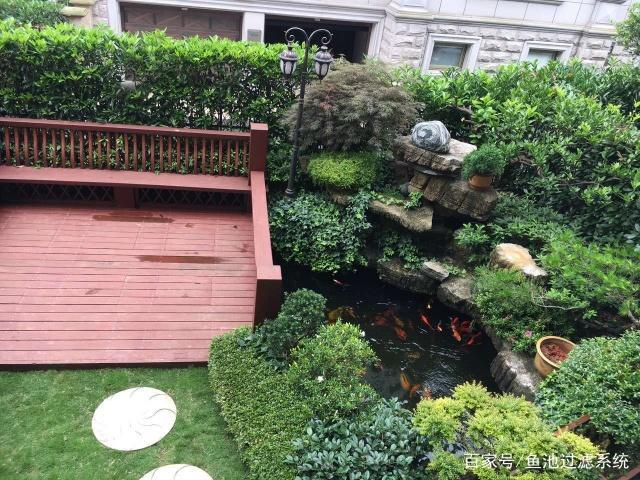 锦鲤别墅爱上庭院兄弟,景观养鱼第一步,建造一1011别墅鱼池图片