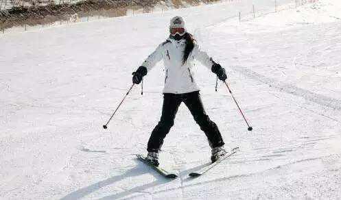 菜鸟必看,初学滑雪者必须掌握的小桃花,99%的视频网知识图片