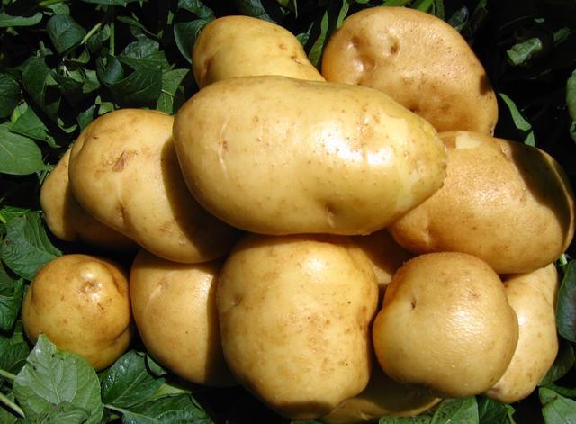 好吃的技巧解封好友,快一起来看看吧!微信怎么邀请土豆种植帮忙步奏图片