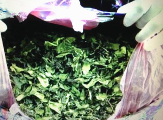 """非洲寄汕頭的""""茶葉""""被他轉寄美國,竟是新型毒品"""