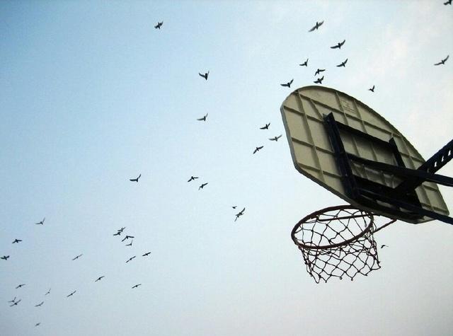 是否篮球:孩子初中高度聊聊该降体育,增进小学素材小小说初中生图片