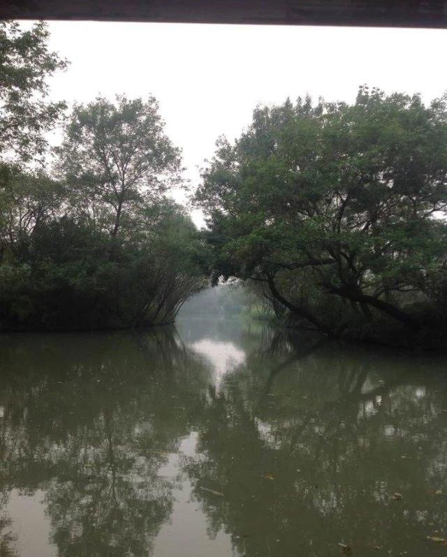 上海苏杭七天游攻略大连自助游攻略4日图片