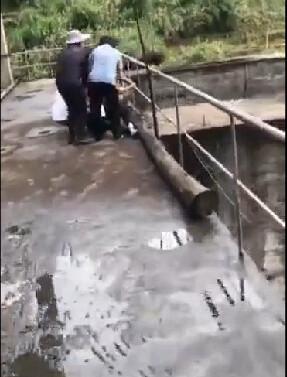 女子抱小孩站桥上拍洪水 孩子掉入水中被冲走