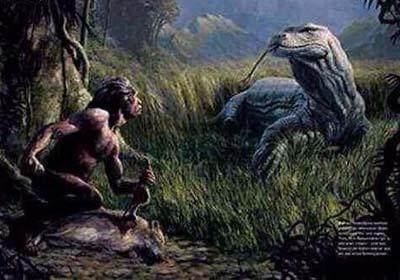 巨型见了都捕食,害怕人类的时期巨蜥,古鸡肉禽流感蜥蜴能吃人类吗图片