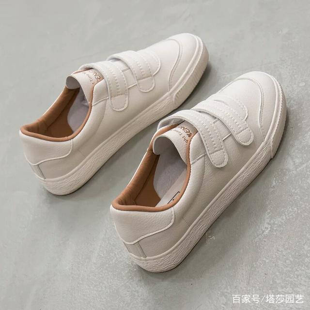 十二星座里最具代表的小白鞋,水瓶座秀气可爱乐扣星座杯图片