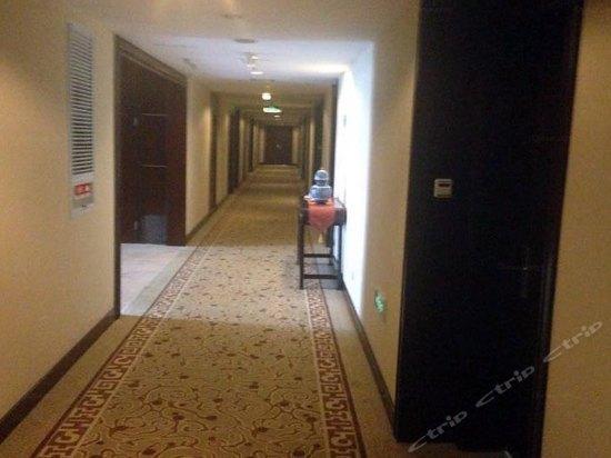 暑假带娃秘笈,扬州大榭仙剑大酒店,奇侠v秘笈两宁波攻略城亲子传国际图片