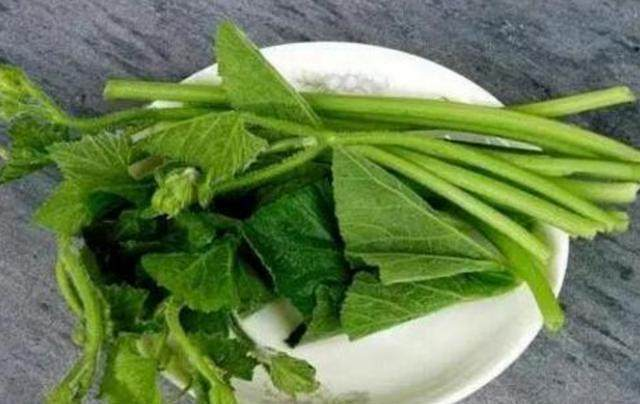 澳门赌场开户:一种菜叶子,能够去结石、治胃痛,抵4副药