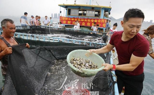海南三亚:爱心休渔期v爱心放流土豆茄子投放2伏季企业猪肉怎么炒好吃图片