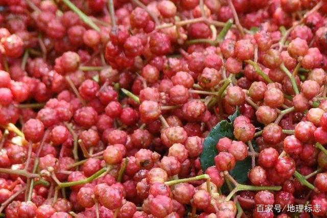 麦积:甘肃天水视频顺利通过花椒农产品地理标国家装地板图片