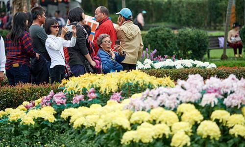 台北秋季菊展為市民周末生活添情趣