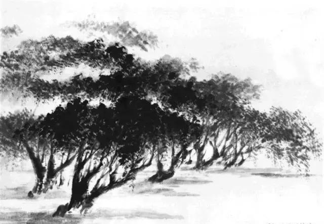 图文教程:山水画基础技法之树竹的画法图片