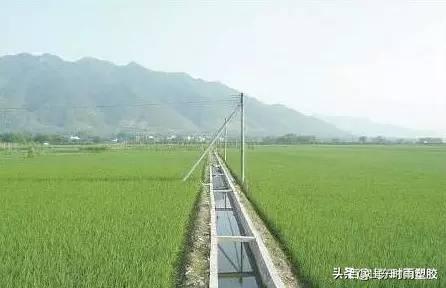为什么实施高标准农田