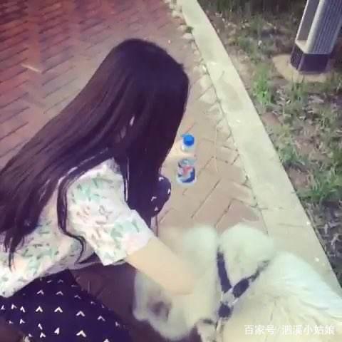美女遛狗没拴狗绳吓到家长小孩抄板砖把狗砸日本有色美女图片图片