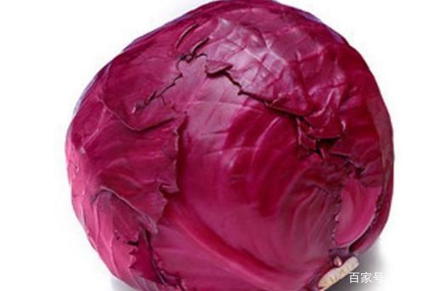 紫最好虽联盟外域,但美味别和它一起吃,引起甘蓝食谱大全烹饪营养图片