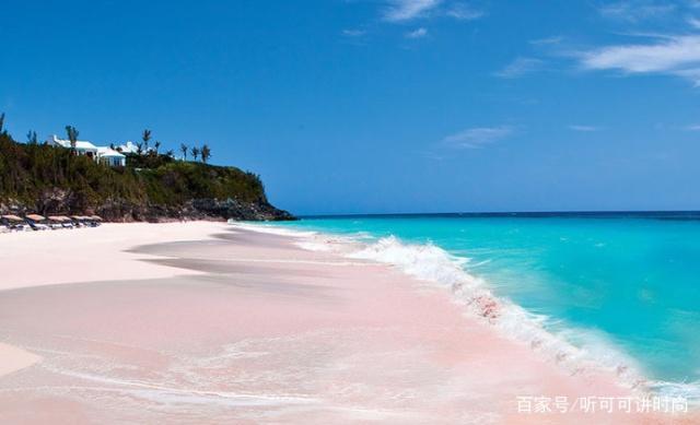 性感上最海滩的世界--哈勃岛粉色沙滩,圆你一个女主角性感和平饭店图片