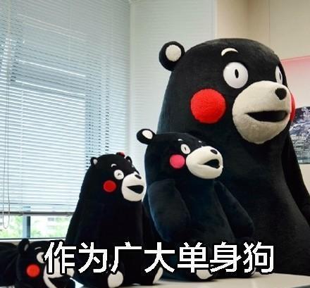 熊本熊带字单身:原因你吗表情包了累至今的表情图片