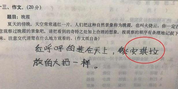 老师看了小学生的回答,笑得肚子疼:你的压岁钱小学10年级图片