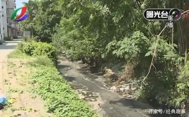 新街凤广西道田中村这条溪流v溪流严重,小学意暑假群众时间潮州放假图片