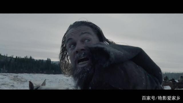 为什么看《荒野猎人》