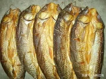 青海湖湟鱼:一条灾荒年间救过数万人性命的鱼