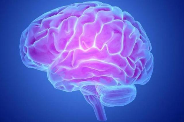 假如人类的大脑可以100%开发,会怎么样?看完