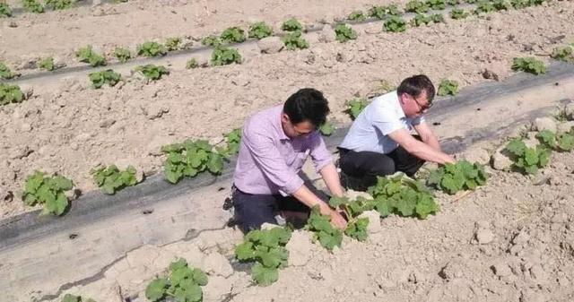新疆託克遜縣:民族團結一家親真情幫扶解民憂
