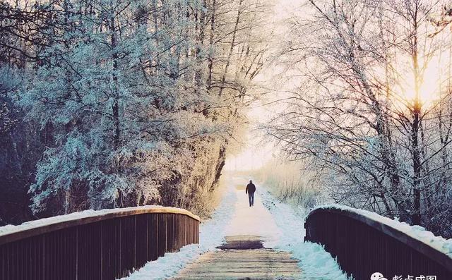 我讨厌说如果冬天来了,春天还会远吗?的人