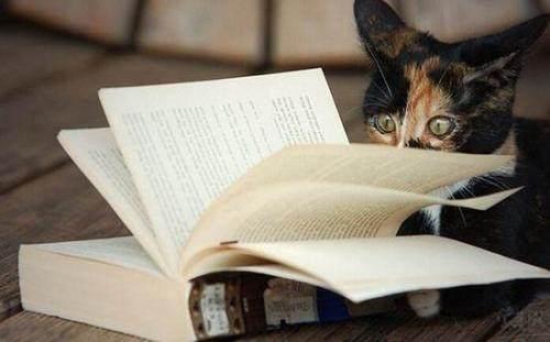 小学生必读课外书目录推荐,培养良好阅读习惯