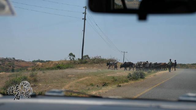 非洲公路自驾游,除了自由与美景,还有1块钱一